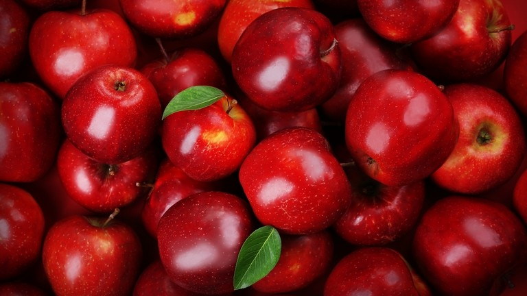 Gazdák, figyelem! December 31-ig lehet bejelenteni az illegális gyümölcsösöket