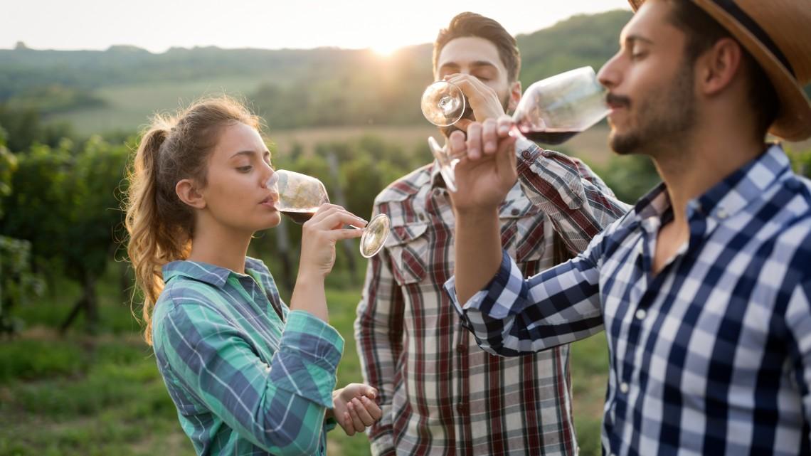 Generációváltás: merre tart a magyar borászat?