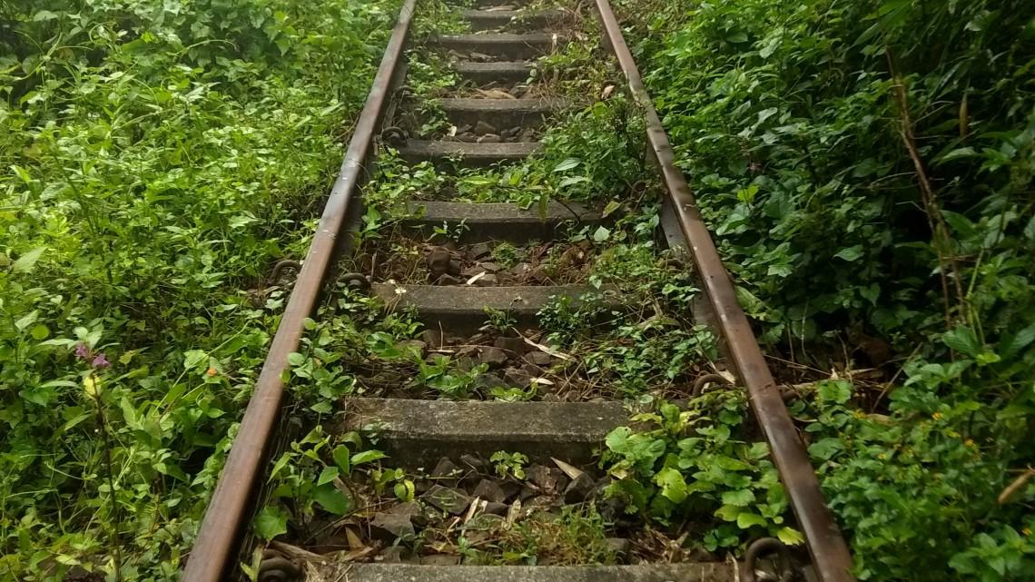 Eldőlt: nem lesz kisvasút a Csarna-völgyben
