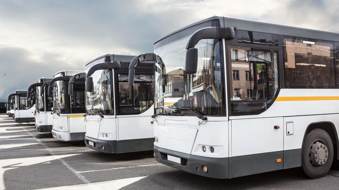Amerikai mintára készül iskolabuszprogram vidéken: elkezdődött a fejlesztés