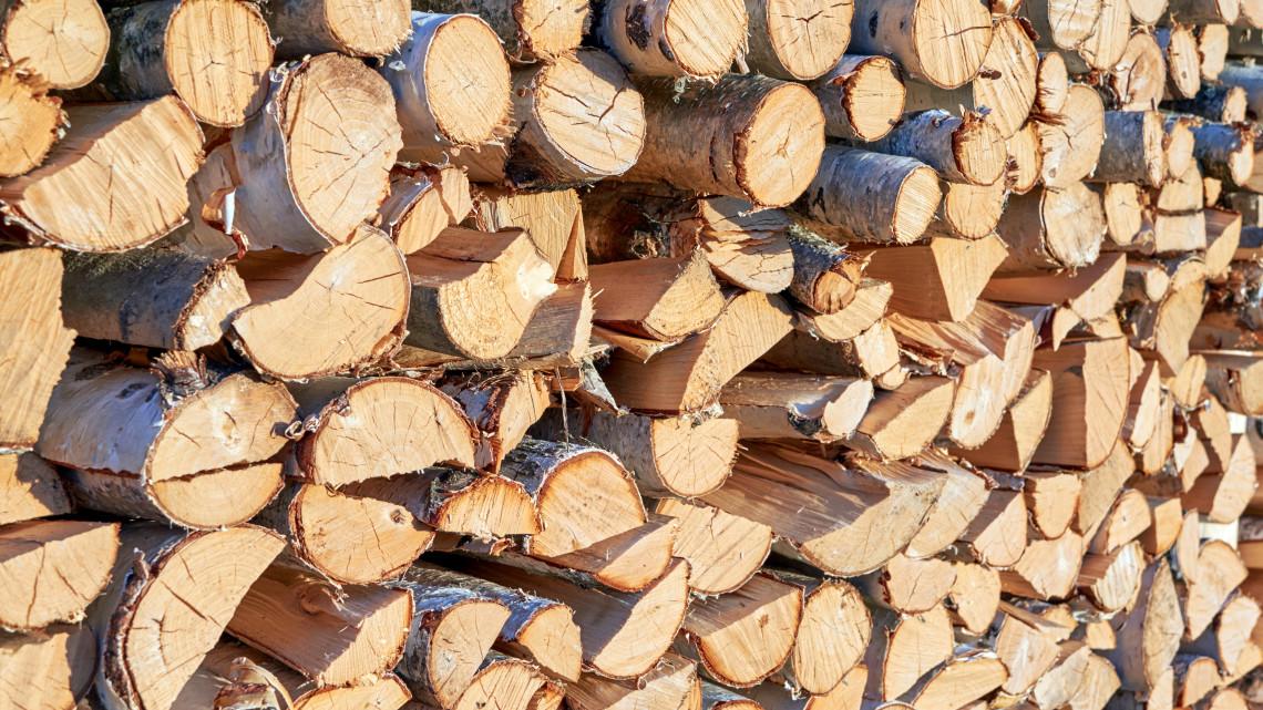 5 hasznos tipp tűzifa vásárláshoz: így biztos nem vernek át idén télen!