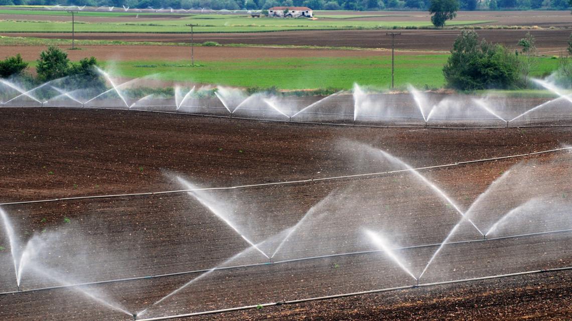 Hatalmas fejlesztés hozhat korszakváltást, és rengeteg profitot a magyar agráriumban