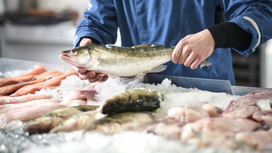 Nagyon kevés halat esznek a magyarok, azt is csak karácsonykor