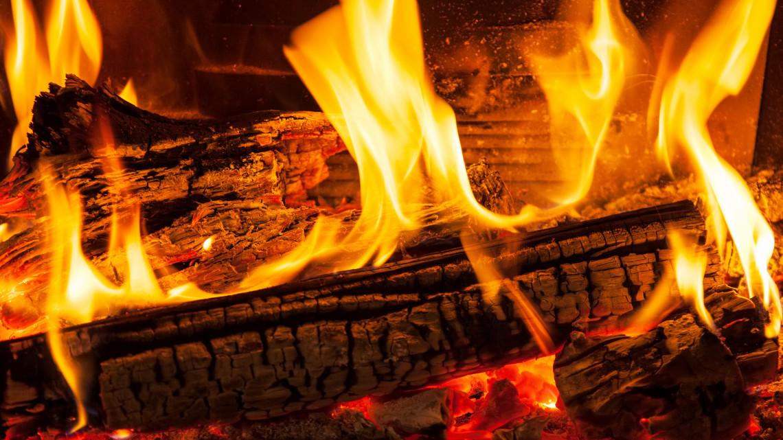 Így trükköznek a tűzifával: súlyos bírságot kaphatnak a csalók
