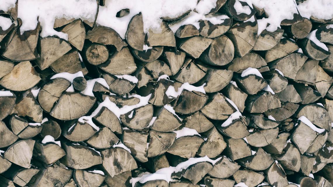 Mindenkinek jutni fog: tűzifa kiszállítás az Ipoly Erdőnél