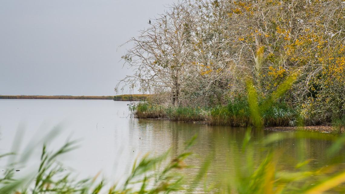 Több millió köbméter vizet mozgattak a Tisza-tónál