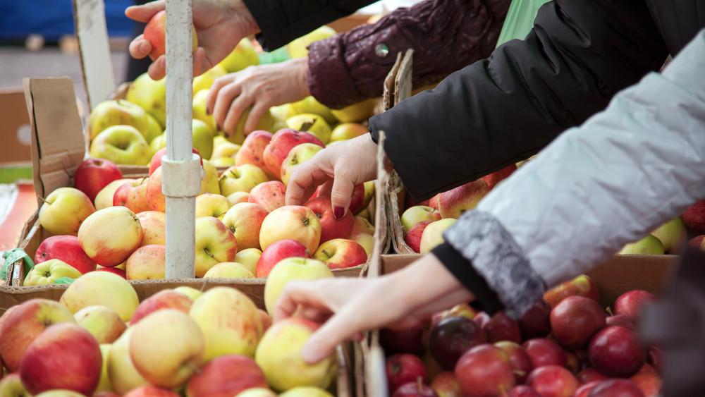 Rengeteg emberi fogyasztásra alkalmatlan zöldséget és gyümölcsöt talált a NAV