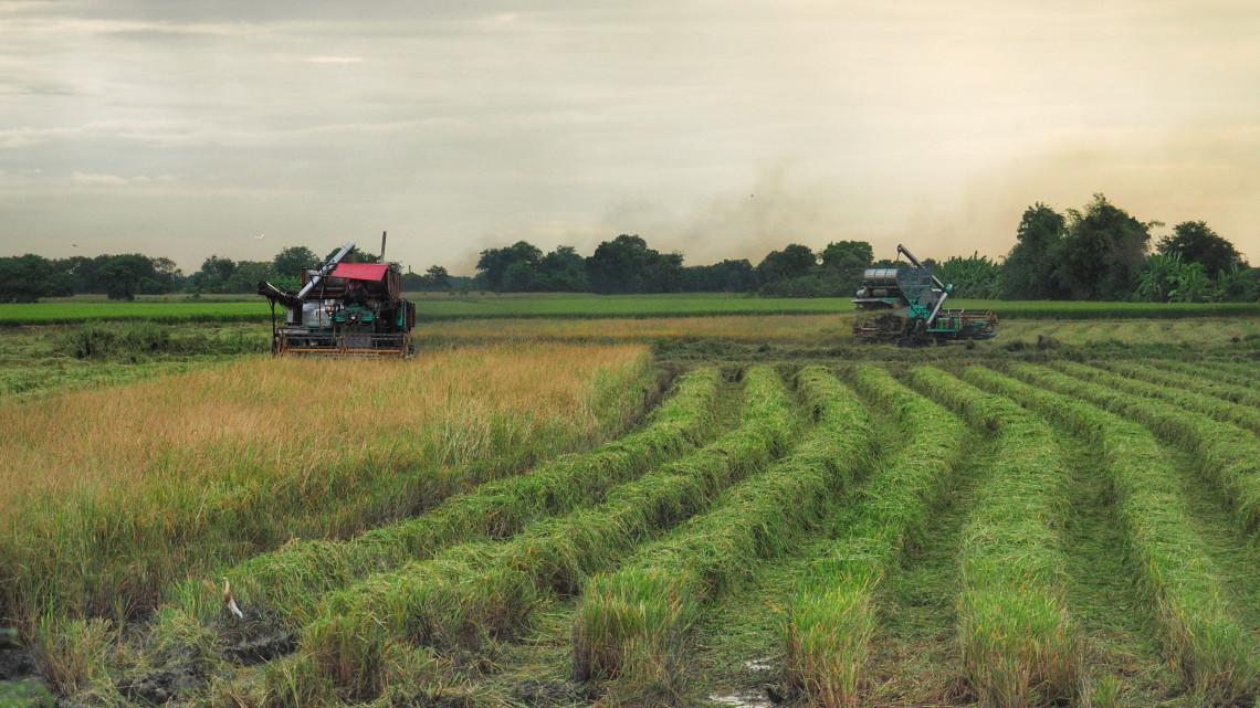 Örülhetnek a gazdák: tavasszal változások jöhetnek a gazdaságokban