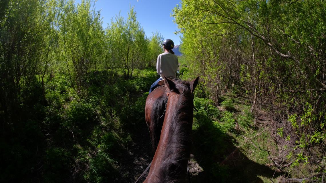 Ezek a legjobb lovastúra-útvonalak most Magyarországon - itt a lista!