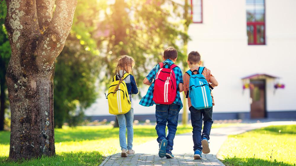 Országszerte elindul az  iskolakert-fejlesztési program
