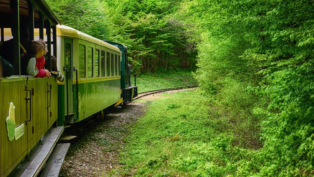 Idén átlépte a 300 ezret az Északerdő erdei vasútjainak összesített utaslétszáma