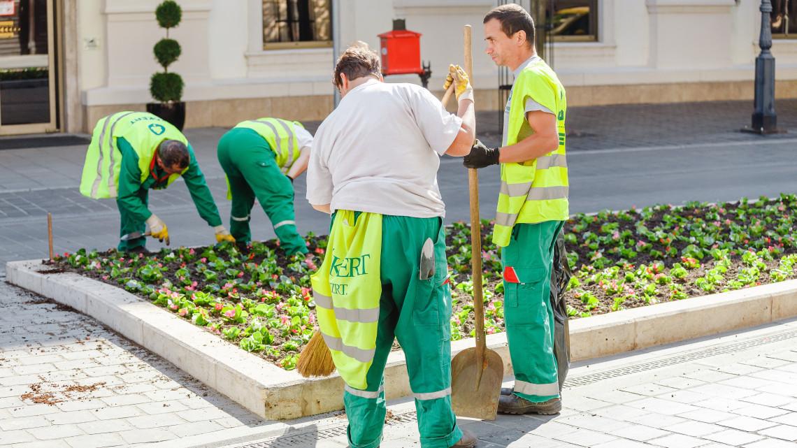 Több mint 66 ezer álláskereső legalább egy éve nem talált munkát