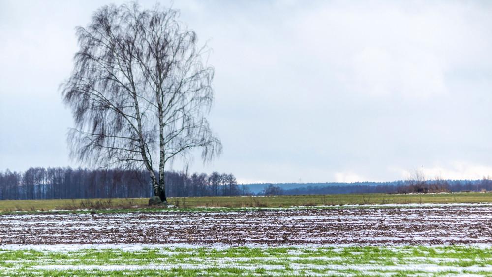 Új kamattámogatású hitelprogram indul az agráriumban