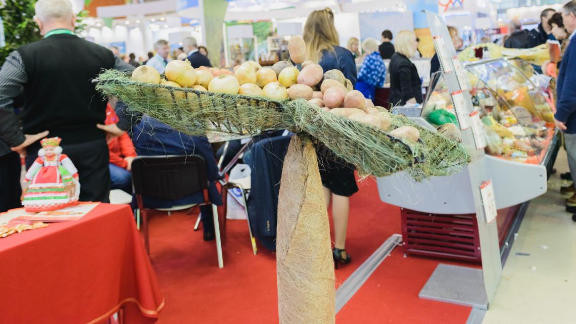Mutatjuk a hazai agrártrendeket: ez volt az idei AGROmashEXPO-n