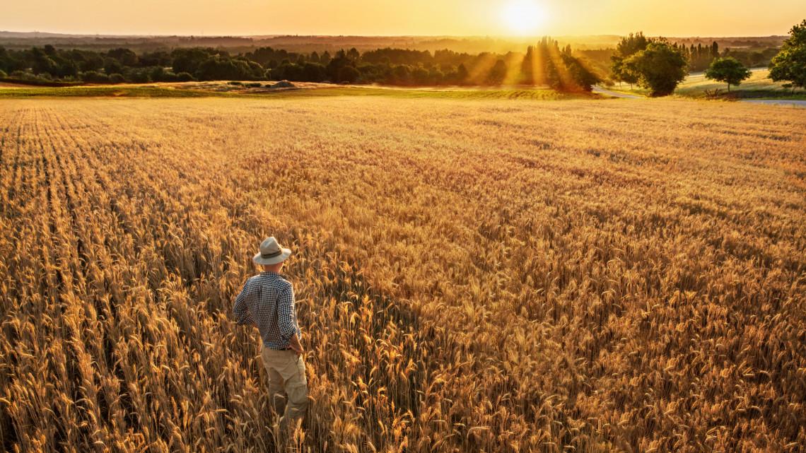 Megváltozott a keretösszeg: dupla annyi pénzt kapnak a tanyasiak