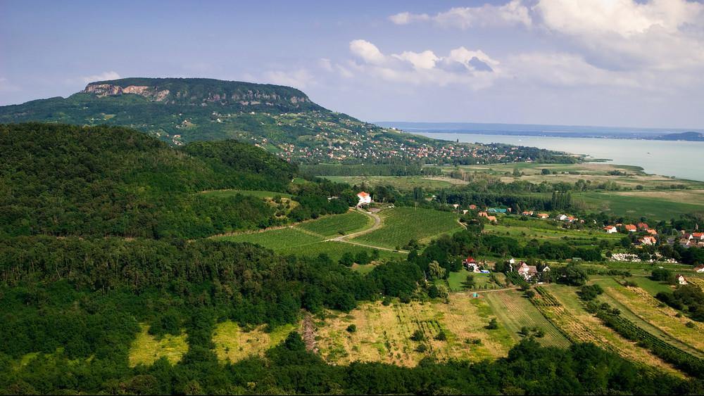 Veszprémben tanácskoztak a visegrádi országok agrárkamarái az agrárium jövőjéről