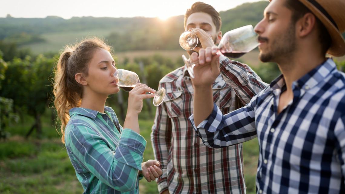 Külföldön mutatkozik be a 30 legjobb magyar borászat