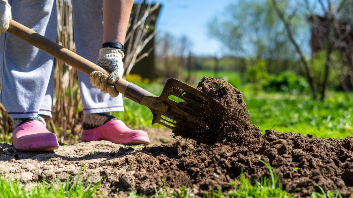 Ezek a legfontosabb kerti munkák februárban: itt a 14 pontos feladatlista
