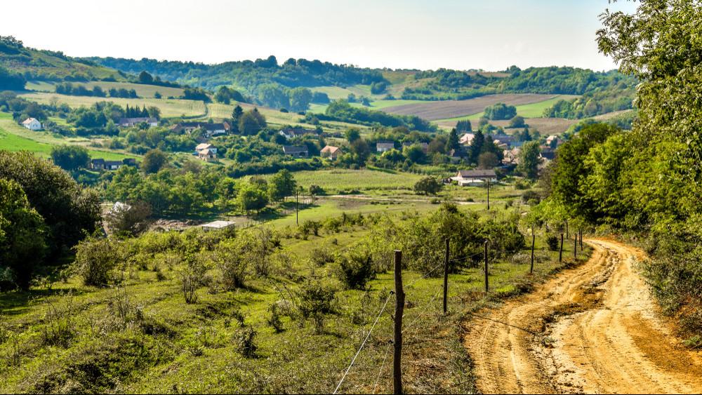 Átszervezett falugazdász hálózattal készítik fel a magyar agráriumot a technológiai robbanásra