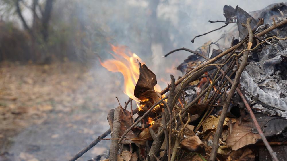 Óvatosan a levélégetéssel: már 585 szabadtéri tűzeset történt Magyarországon