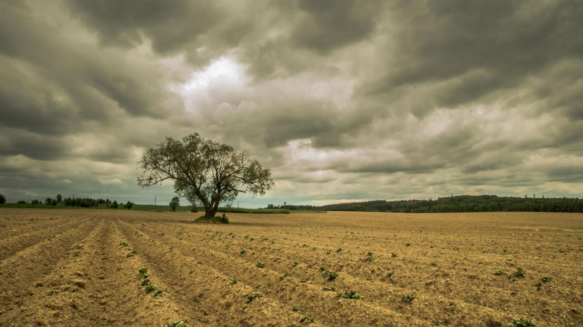 Milliárdos károk a mezőgazdaságban: mutatjuk az új biztosítási csomagokat