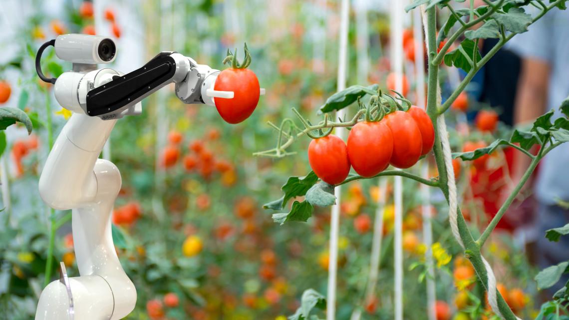Itt a válasz a munkaerőhiányra: jönnek a mezőgazdasági robotok?