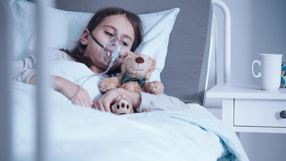 Beteg gyermekekhez és állatmenhelyekhez áramlik a legtöbb adó 1 százalék
