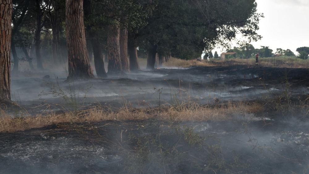 Itt a teljes tűzgyújtási tilalom: napi több száz tűzeset tombol az országban