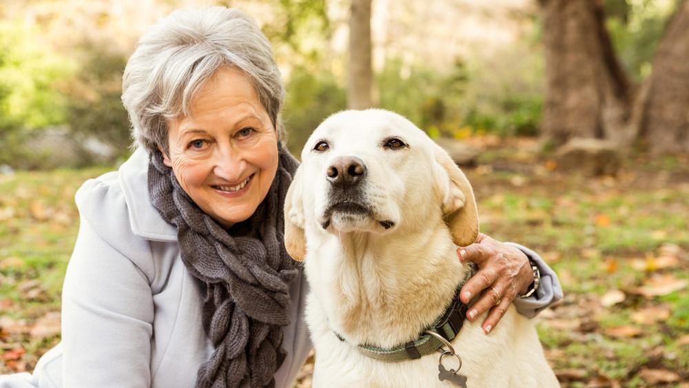 A kutyatartás árnyoldala: komoly veszélyt okozhatnak a virgonc ebek