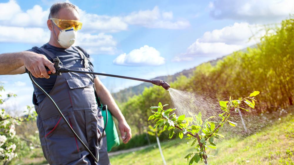 Döntöttek: ezeknek a növényvédő szereknek búcsút inthetünk