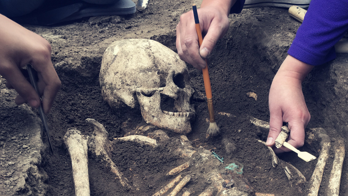Török kori régészeti ritkaságok kerültek elő egy bácsbokodi ásatáson