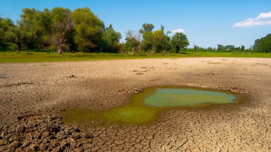 Kiderült, miért tűnt el a víz a Harangodi-tóból