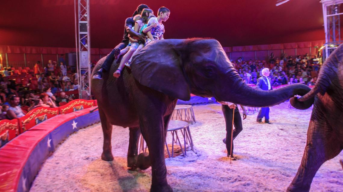Parádés műsorral készült a Magyar Nemzeti Cirkusz: 22 városban lesz megtekinthető