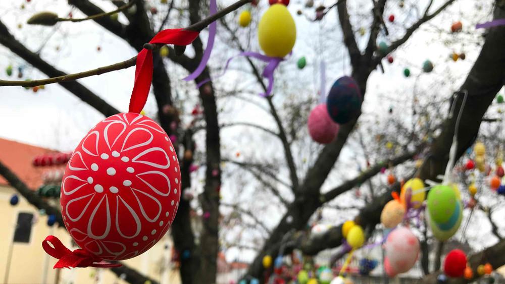 Új rekord születhet Dunaföldváron: 7000 tojással díszítik fel a húsvéti fát