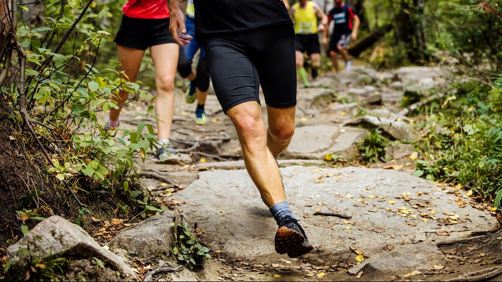 Teljesítménytúra az erdőben: futók és gyaloglók is indulnak a VérKörön