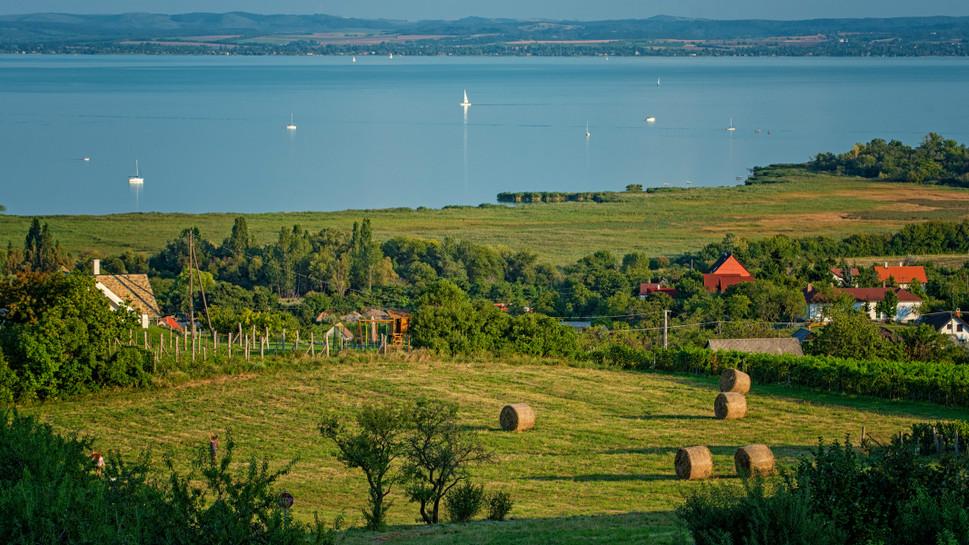 Szúnyoghelyzet a Balatonnál: mélyen zsebbe kell nyúlnia a tóparti városoknak