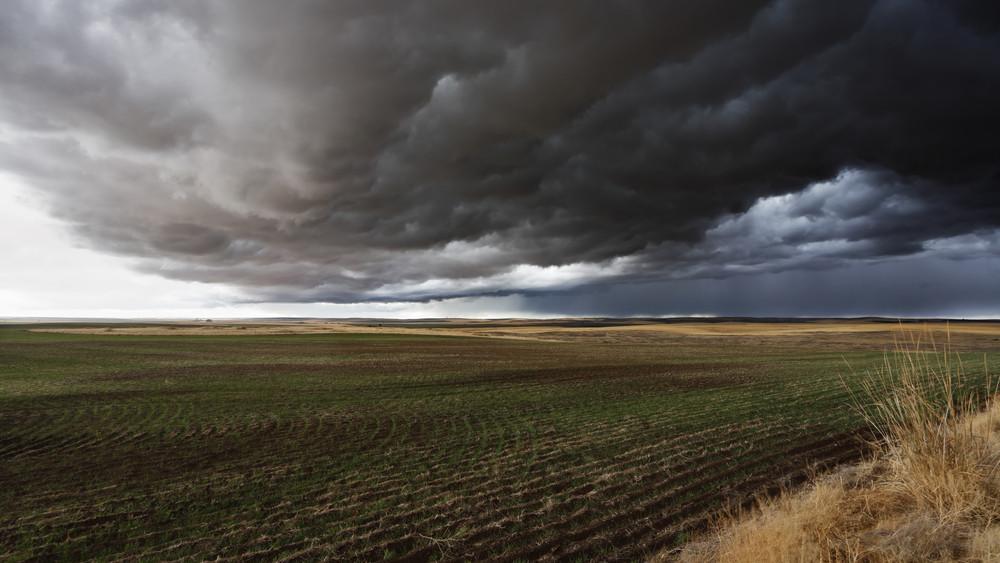 Jó hír a gazdálkodóknak: így bővültek a biztosítási csomagok