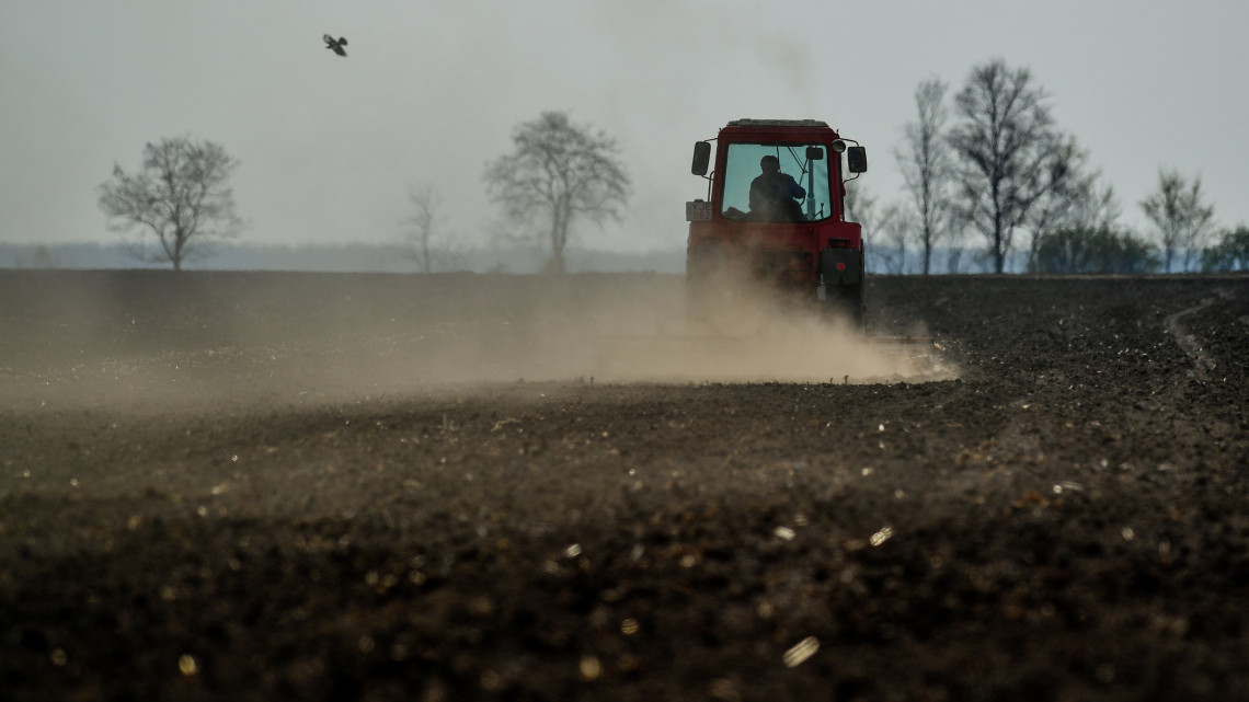Ennyire súlyos az aszályhelyzet: veszélyben a magyar zöldség és gyümölcs