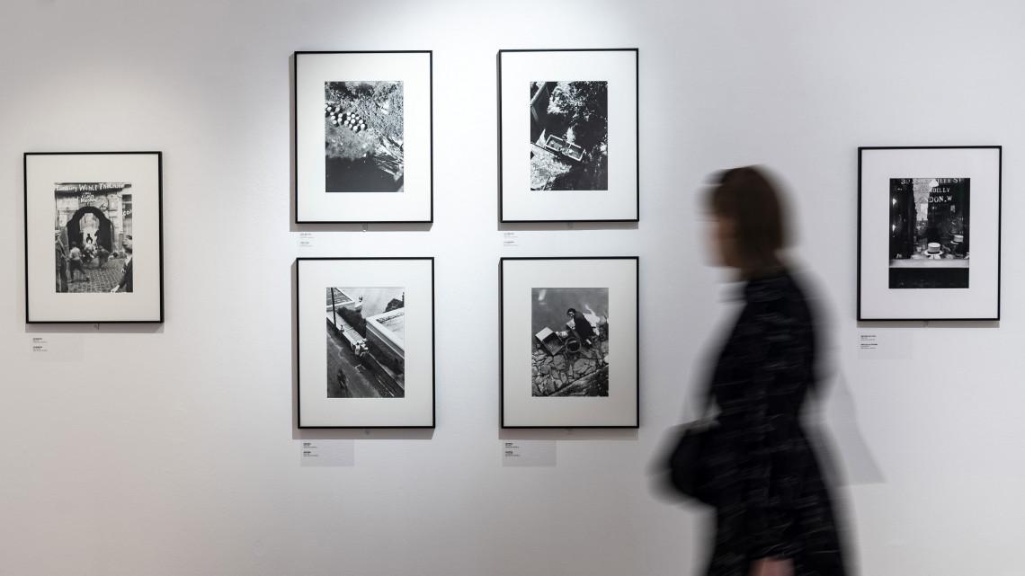 Egyre több a kortárs alkotó Fejér megyében: különleges kiállítás nyílt
