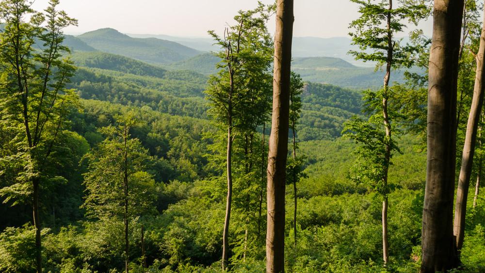 Tavasztól őszig betáblázhatod magad: geológiai sétákra hívnak Nógrád megyében