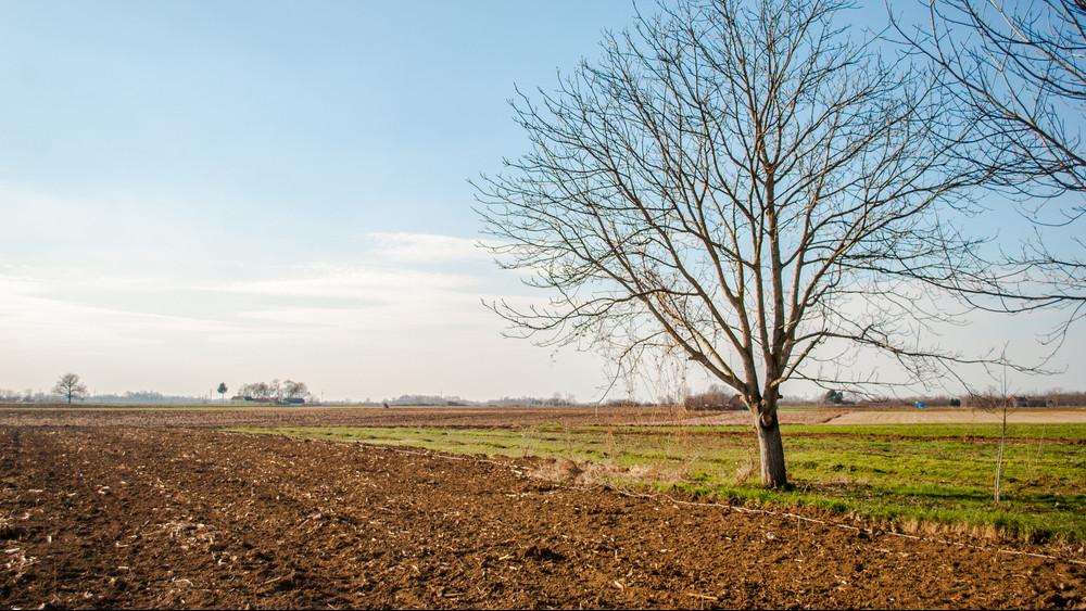 Nyakunkon a klímaváltozás: a gazdáknak érdemes piaci biztosítást kötniük