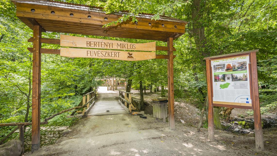 Tudtad? Nagy munka folyik a magyar erdőkben a ritka növényekért