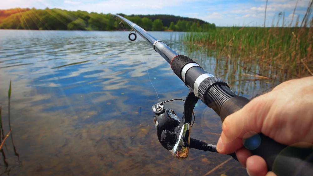 Minden horgászt érint: itt a szigor, ezeket a halakat most tilos kifogni