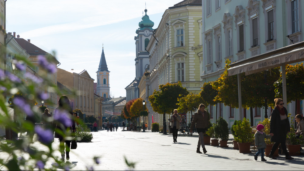 Kaposvár zöldbe borul: hatezer fa ültetése van tervben