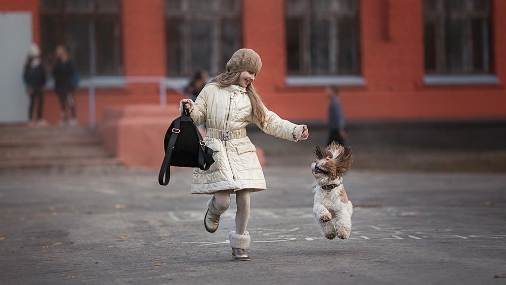 Oktatási reform: a vidéki általános iskola, ahol kutyák tanítják a gyerekeket