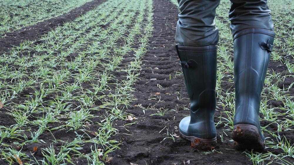Nem hozott javulást az eső: megbénult a mezőgazdasági munka Zalában