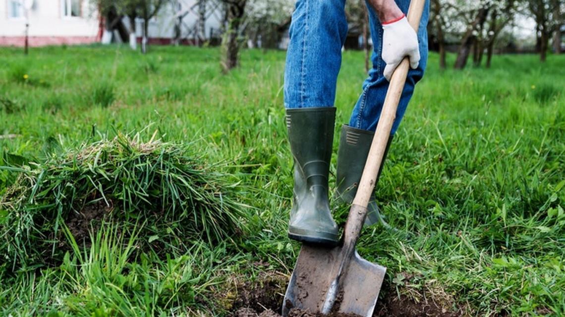 Forrásmegvonás jöhet: hektáronként 15 ezer forintot bukhatnak a gazdák