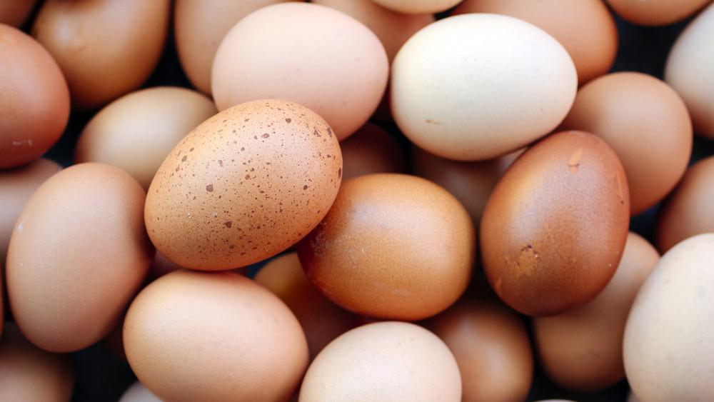 Tojáskatasztrófa: beszüntetik a ketreces tartásból származó tojások árusítását