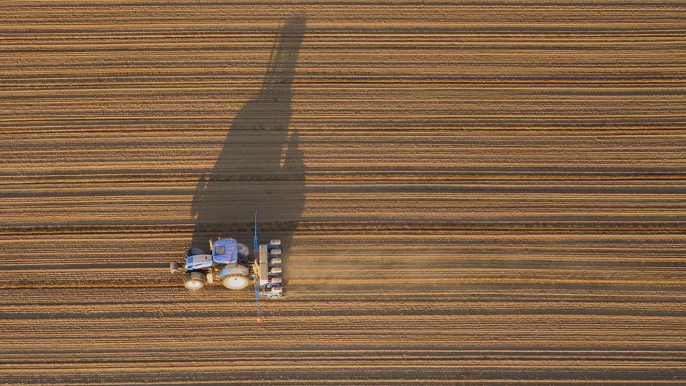 Visszaesett a szántóföldek drágulása: itt éri meg tanyát venni most!