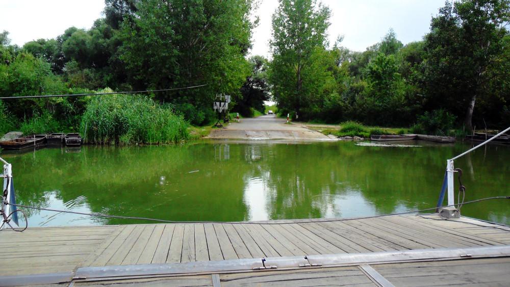 Vigyázat: durván megbetegedhetsz, ha a Tiszában fürdesz